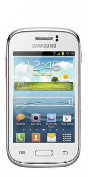 Samsung Galaxy Young S6310N