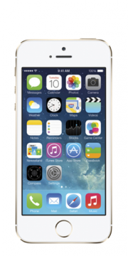 Apple iPhone 5S (A1533)